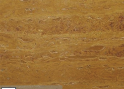 Gold Travertine Vein Cut (Турция)