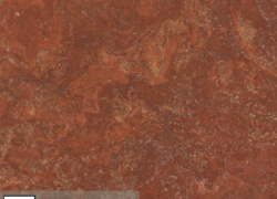 Persian Red Travertine Cros Cut (Иран)