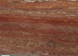 Persian Red Travertine Vein Cut (Иран)
